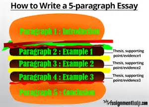 Essay help line