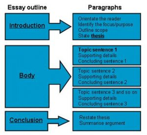 Is custom essay good